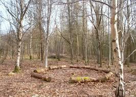 log seating